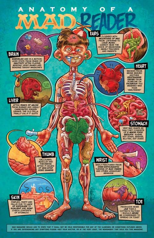 Mad Anatomy illustration
